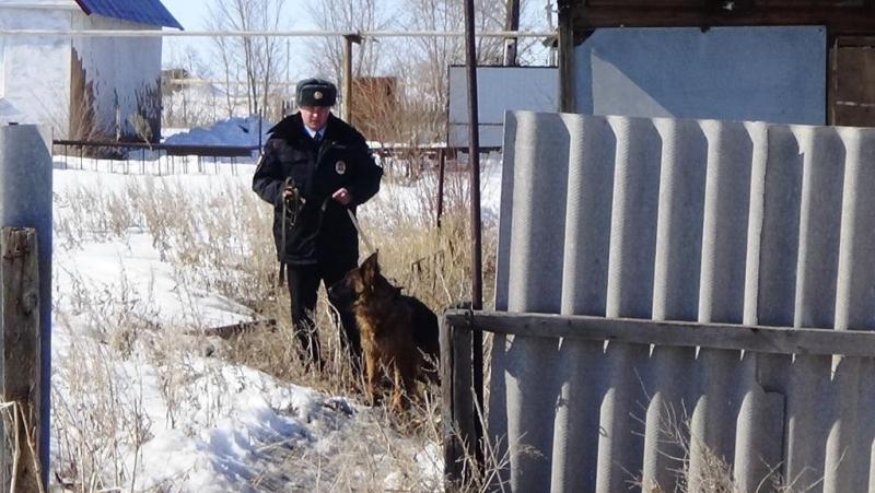 служебно-розыскная собака с места кражи все это