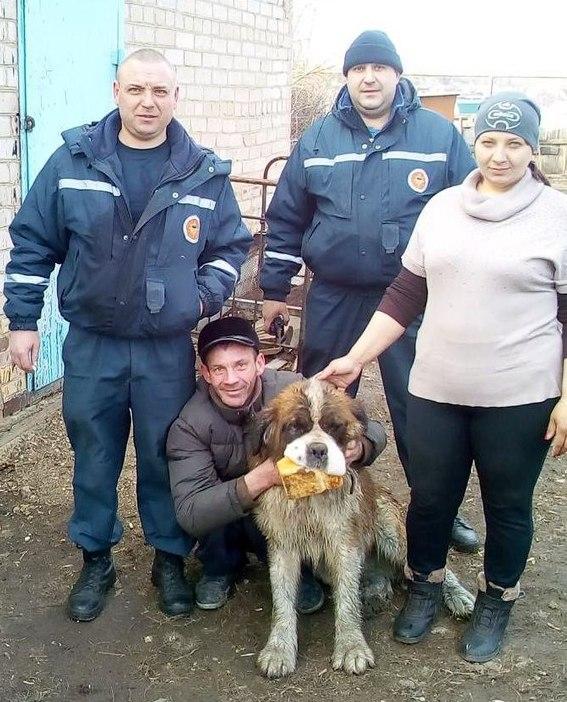 Оренбургские спасатели вытащили собаку из 20-метрового колодца