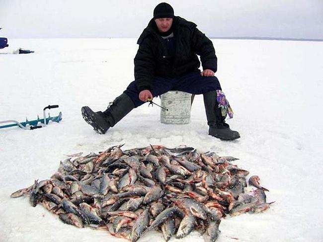 рыбацкий стан новая слобода