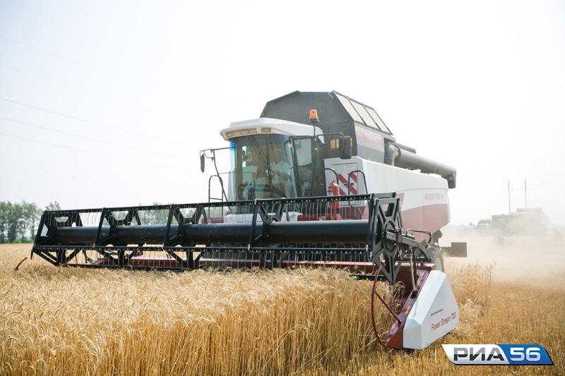 ВКазахстане намолочено 16,58 млн тонн зерна