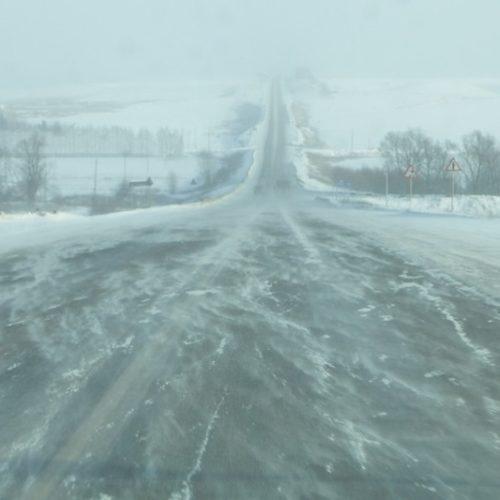 Две трассы в Оренбуржье перекрыли из-за метели