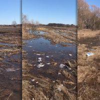МЧС возобновило работы на месте крушения Ан-148 в Подмосковье