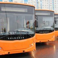 Мэрия Оренбурга вновь нарушила закон о пассажирских перевозках