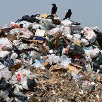 В Сорочинске закроют отравляющий воздух мусорный полигон