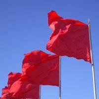 В селах Оренбуржья ко Дню Победы проведут акцию «Именной флажок»