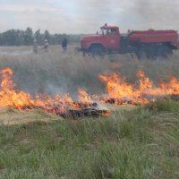 В Оренбургской области в полтора раза возросло количество степных пожаров