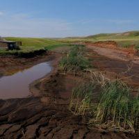 Оренбургских чиновников отправили искать незаконные пруды на Google-картах