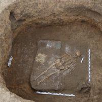 Об этом писал Геродот. В Оренбуржье исследуют некрополи железного века