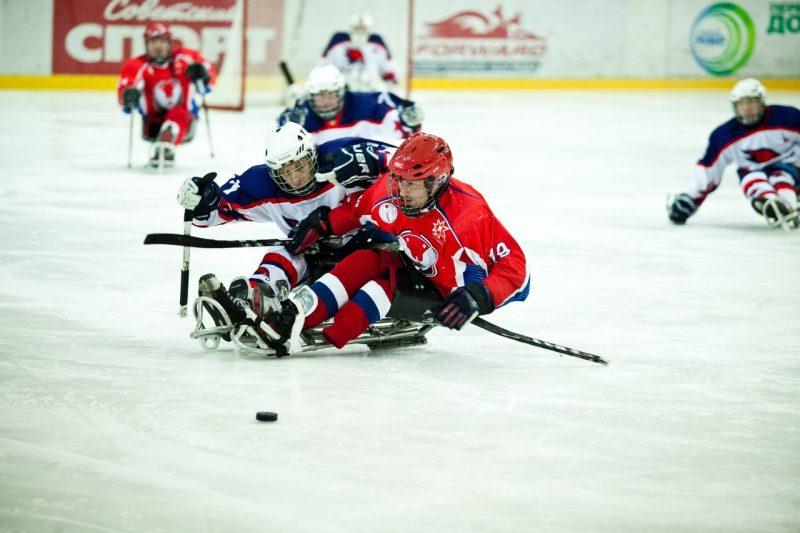 хоккейный клуб ястребы в москве