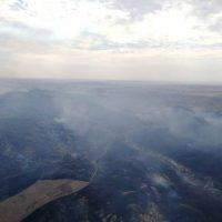 На линии огня: в Медногорске объявили режим ЧС из-за пожаров