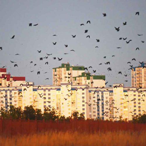 На краю. Фотоперекресток Олега Рукавицына