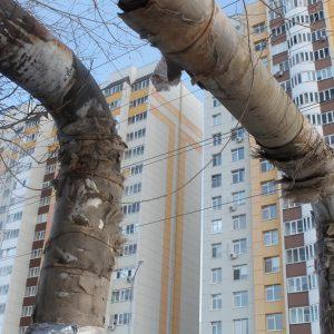 Голые трубы: общественники проверили состояние теплотрасс в Оренбурге