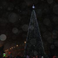 В Орске открылась главная елка