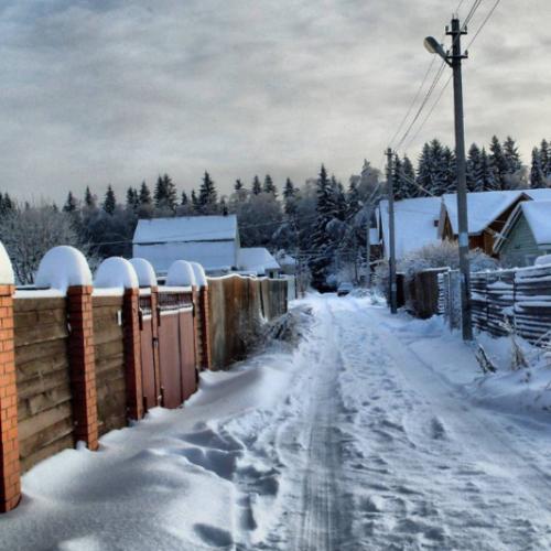 Оренбургские садоводы получат субсидии на строительство и ремонт дорог