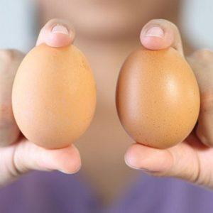 В Роскачестве определили самые прочные яйца в России