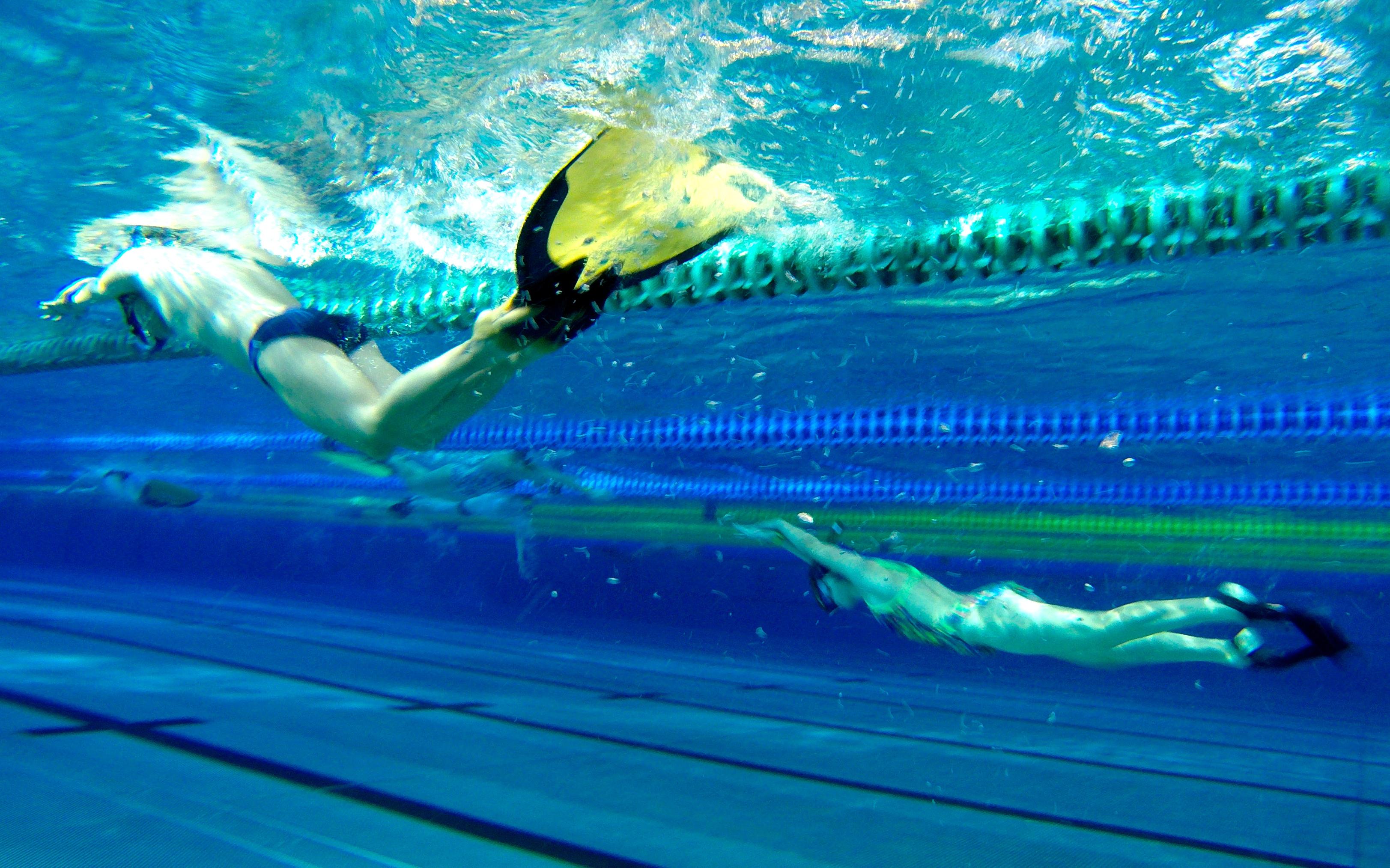 хорошо картинки с плавания в ластах что действие всех