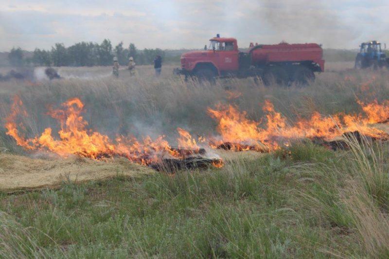 26 природных пожаров произошло в Оренбуржье на площади почти 50 га