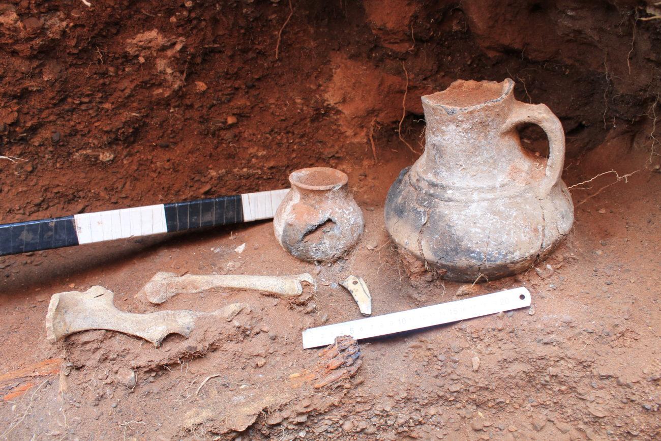 Греческая кираса и сарматские жертвенники из Оренбурга стали экспонатами Госкаталога