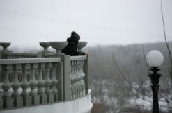 В выходные в Оренбуржье потеплеет до +2 градусов